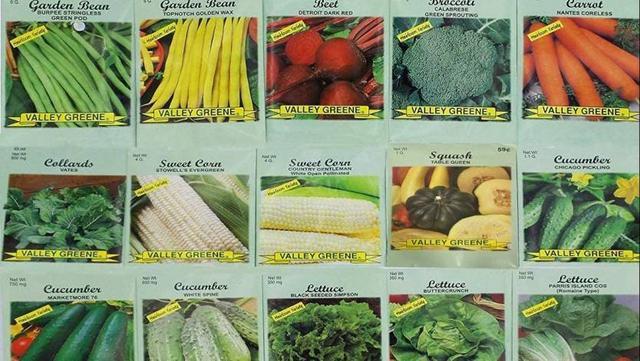 Best Heirloom Vegetable Seeds
