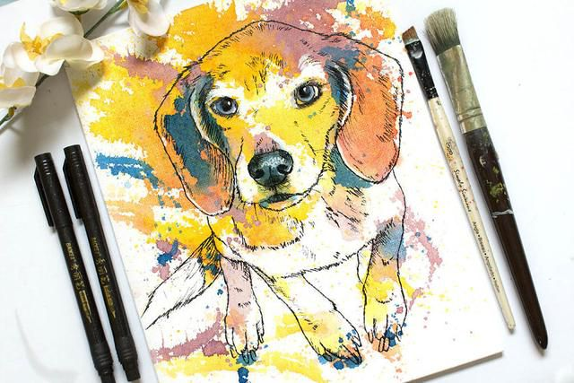 I Use Color Splatters To Paint People's Pets