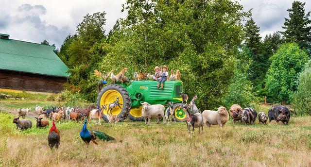 I Photograph Full Farm Portraits!