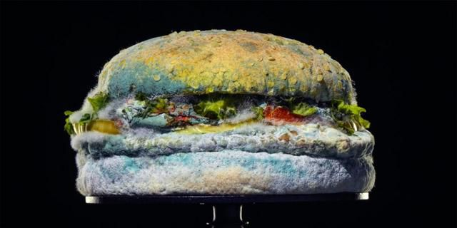 Burger King's New Ad Shows Whopper In Molds and People Think It's Genius