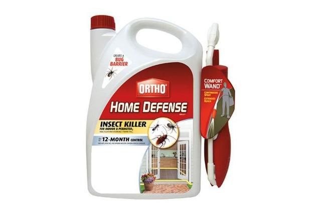 Everything You Need to Get Rid Of Cockroaches