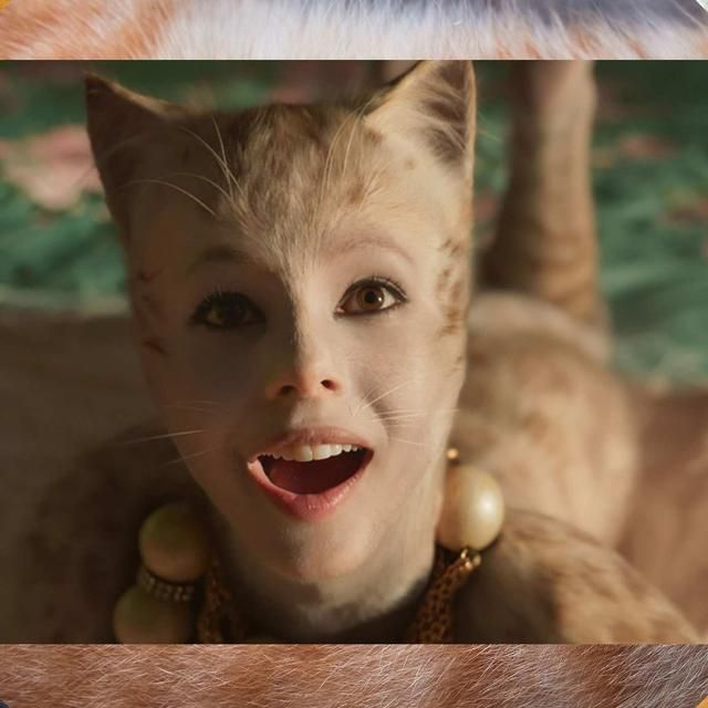 Which Body Part in Cats Is Most Disturbing?