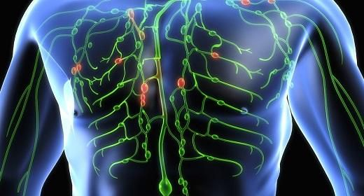 How To Naturally Cleanse The Lymphatic System To Fight Chronic Disease