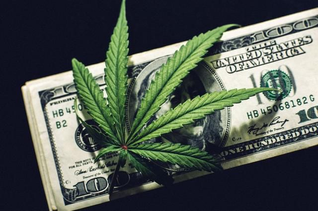 The First High-Profile Pot Stock Bankruptcy Is Likely Only Months Away