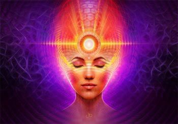 Everything We Know About Ayahuasca and the Pineal Gland