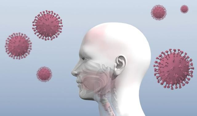 What does the coronavirus do to your body? Everything to know about the infection process
